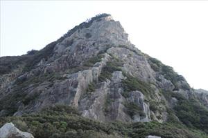umikongo01-kameda