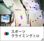 olympic_sport_door1-2